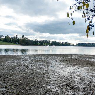 Badsee bei Beuren - Papillu