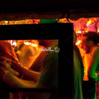 Blick zur Bar - Papillu