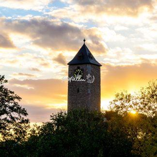 Blick zur Burg Giebichestein - Papillu