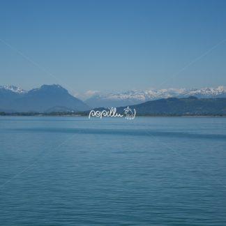 Blick zur Schweiz - Papillu