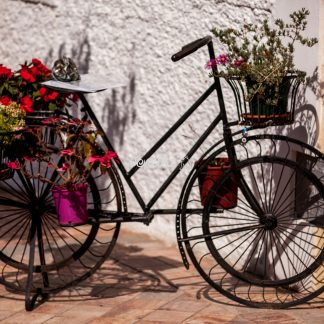 Blumenfahrrad Spanien - Papillu
