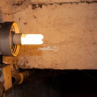 Licht - Papillu