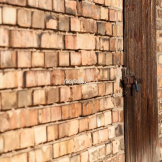 Mauer mi Tür - Papillu