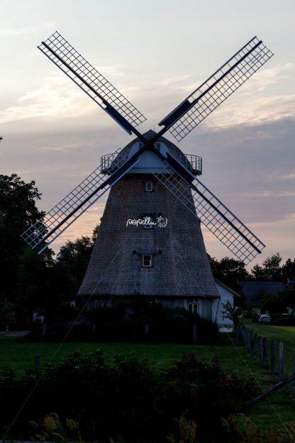Ostsee – Darß- Windmühle - Papillu