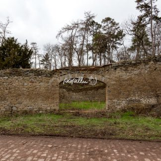 Ruine - Papillu