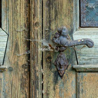 Tür - Papillu