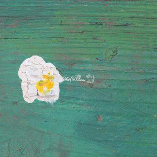 Blüte - Papillu´ Lampen Design, Grafik und Fotografie