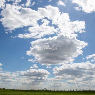 Wolken über uns - Papillu´ Lampen Design, Grafik und Fotografie